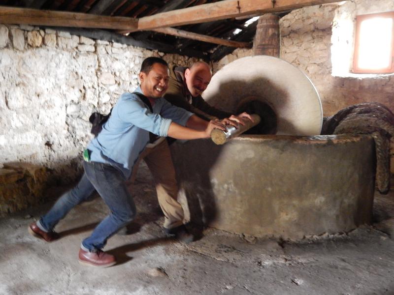 Olive oil press demonstration